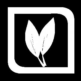 Gestão de Agropecuária