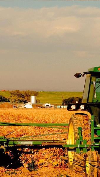 CASA Visual Gestão de Agropecuária
